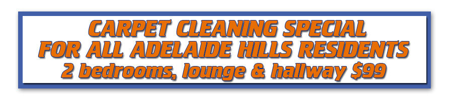 Carpet Cleaning Special for Adelaide Hills residents